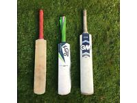 Garden Cricket bats for youngsters