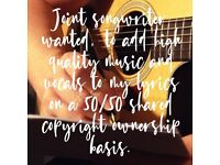 Joint songwriter wanted, to add high quality music and vocals.