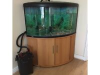 Large corner fish tank with pump and cabinet