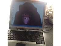 Del laptop d600