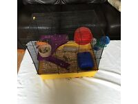 2 Hamsters 3months old. Will come with cage. Lovely pair