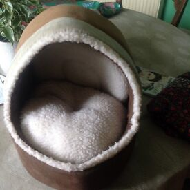 Cosy kitten bed