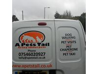 Dog Walking, Pet Chaperone. A Pets Tail, Pet services