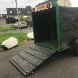 6f4 x 4f4 sheep / dog trailer