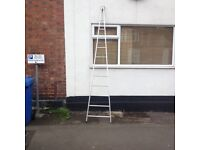12ft window cleaning ladder