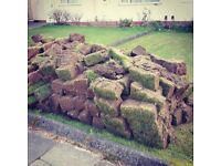 Free turf/ topsoil, lots of it! Sorry no delivery available, collection only. Roseworth.
