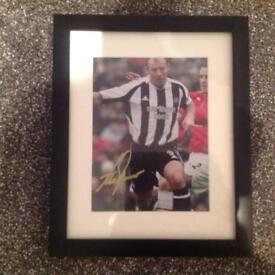 Alan Shearer signed Photo in Black frame
