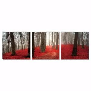 Dawn Forest Set 3 Piece Photographic Print Set by Furinno - Brand New