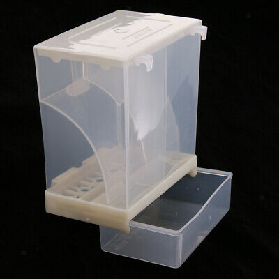 Automatic Poultry Feeder for Bird, Plastic Food Container for Parrot Pigeon