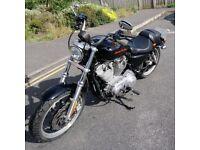 Harley Davidson 2013 xl883l superlow