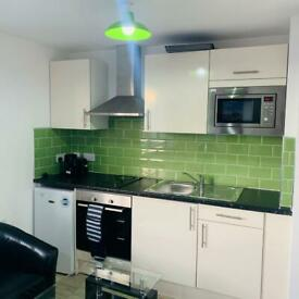 STUDIO FLATS DSS ACCEPTED PERRY BARR