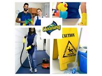 Domestic cleaner for office/school/home
