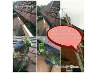 Gutter Clearing and Window Cleaning service