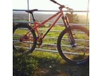 Ragley jump bike