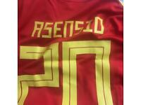 Spain World Cup kit