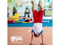 Gymnastics Instructor