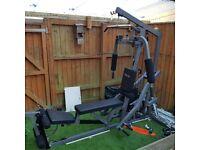 body craft multi-gym.