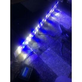 Dsuny fish tank lights