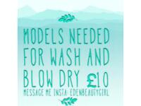 Blow dry models needed