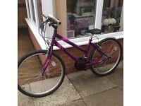 Ladies/Girls Apollo outrider bike