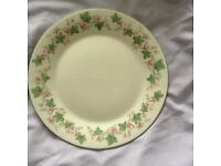 """1 Side Plate from Royal Doulton """"Expressions"""" Set with Green and Pink Painted Flowers On The Inside"""