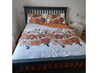 LOVELY DOUBLE ROOM TO RENT IN VICTORIAN HOUSE