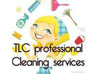 Professional house cleaning service cheap friendly and reliable