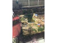 Fish pond free