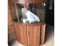Juwel trigon 190 marine tropical fish tank aquarium