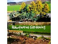 Grass cutting and gardening