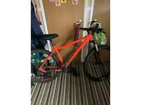 Voodoo bizango mountain bike 29er