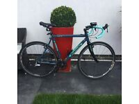 Men's Bianchi Axis cross bike