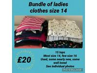 Bundle of used ladies clothes size 14