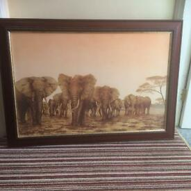 Large Framed Elephant Print