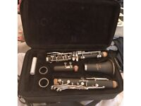 Student Clarinet with carry case, 2 Clarinet books and a green music stand. Very good condition