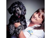Volunteer Dog Lovers Wanted- Looking for companionship? You're in the right place!