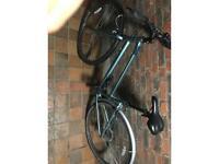 Ridgeback comet bike