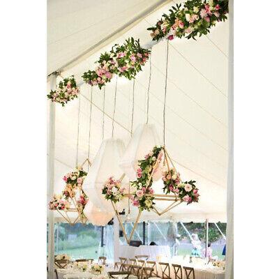 2pcs Geometric Air Plant Hanging Flower Holder Wedding Decoration DIY Bronze](Diy Plant Holder)