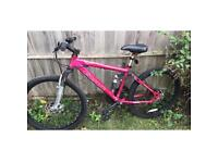 Carrera Girls Mountain Bike