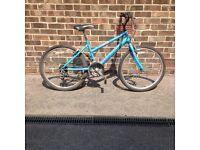 Girls Raliegh bike