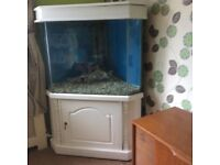 Freshwater tropical or marine Fishtank and equipment Ed