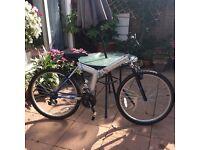 Challenge - Unisex Foldable bicycle