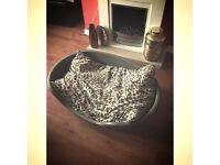 Extra Large Plastic dog bed