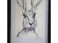 Original biro drawings of a hare, crayfish and pheasant. By Norfolk artist Hollie Pack