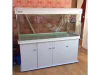 tropical and marine fish tank and cabinet