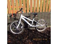 20'' bicycle for sale very good condition ONLY £20