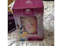Disney travel case