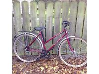 Apollo Ladies Bicycle