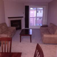 Newly Renovated 2 Bedroom Apartment In South London