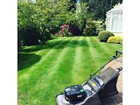 Garden Maintenance - Available for one-off and regular garden visits in and around Milton Keynes